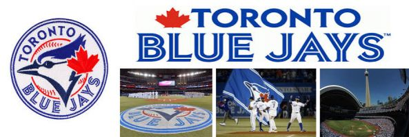 Toronto Blue Jays American League MLB baseball team pictures of stadium, logo, team and name by Everything Doormats.