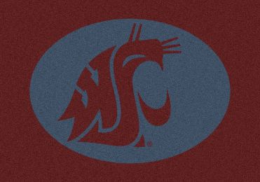 Washington State Spirit Area Rug - College Logo Mat