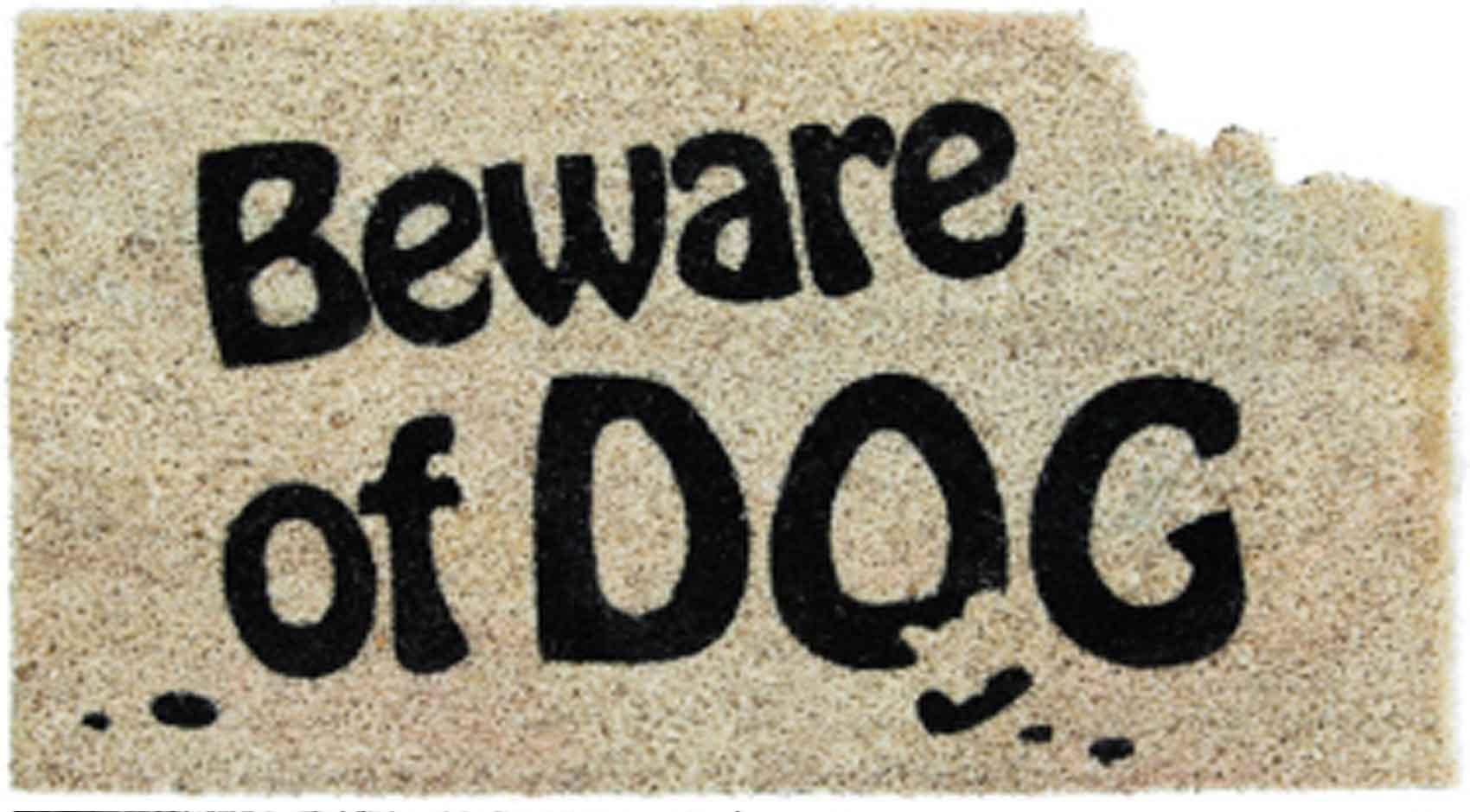 Classic Coir Beware Of Dog Doormat   16 X 28