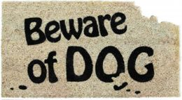 Classic Coir Beware of Dog Doormat - 16 x 28