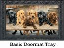 Indoor & Outdoor Bundles of Cuteness MatMates Doormat