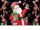 Indoor & Outdoor Candy Cane Santa MatMates Doormat