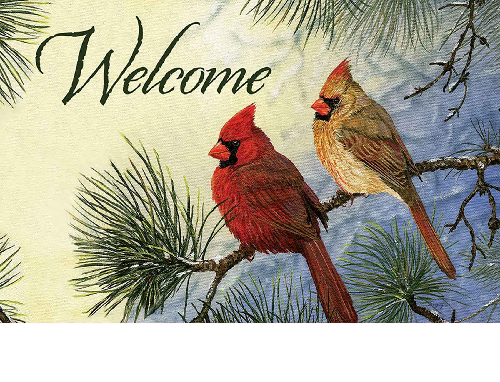 Indoor Amp Outdoor Cardinal Couple Insert Doormat 18x30