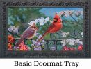 Indoor & Outdoor Cardinal Gate Insert Doormat-18x30