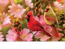 Indoor & Outdoor Cardinal Love Insert Doormat-18x30
