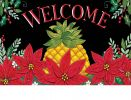 Indoor & Outdoor Christmas Pineapple Insert Doormat-18x30