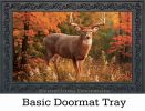 Indoor & Outdoor Fall Buck Insert Doormat - 18x30
