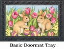 Indoor & Outdoor Hiding the Eggs MatMate Doormat - 18 x 30