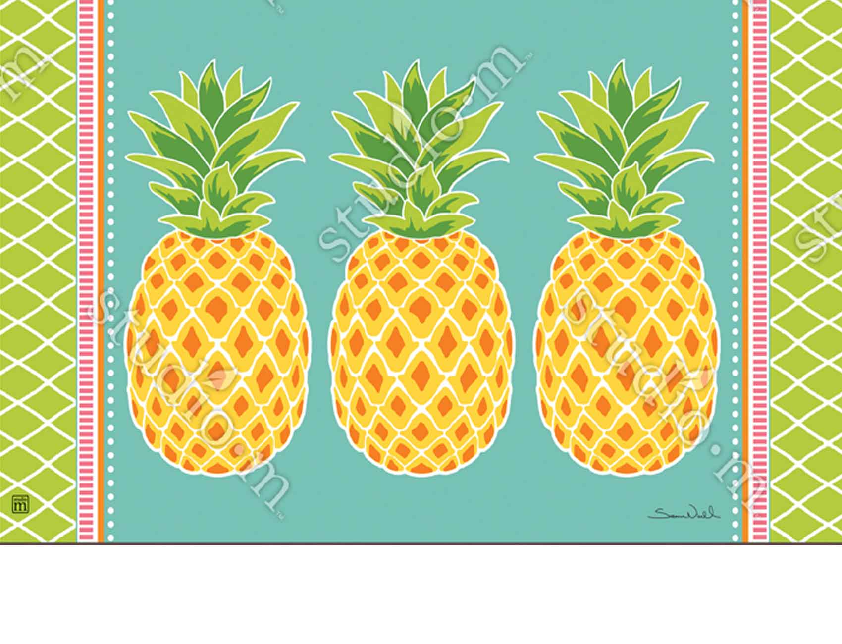 Indoor Amp Outdoor Preppy Pineapple Matmate Doormat 18x30