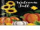 Indoor & Outdoor Pumpkin Trio Insert Doormat - 18x30