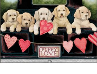 Puppy Love Indoor & Outdoor MatMate Doormat - 18 x 30