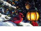 Floral Embossed Snowy Night Birds Dimension Doormat-19x30