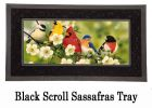 Sassafras Songbirds Switch Mat - 10 x 22 Insert Doormat
