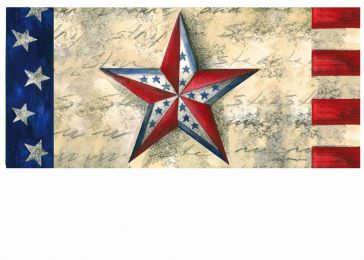 Sassafras Stars on Star Switch Mat - 10 x 22 Insert Doormat