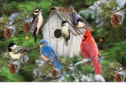 Indoor & Outdoor Winter Bird House Insert Doormat - 18x30
