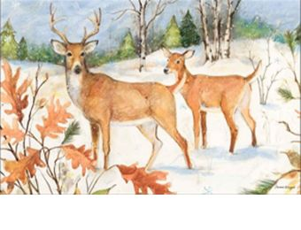 Indoor & Outdoor Winter Deer MatMates Doormat - 18 x 30