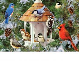"Indoor & Outdoor Winter Songibirds Insert Doormat - 18"" x 30"""